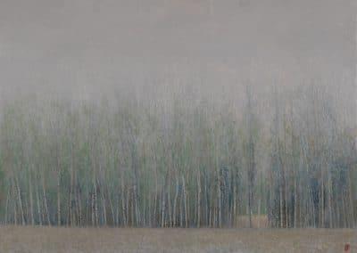 Chopos en niebla-O-T-50x70cms.